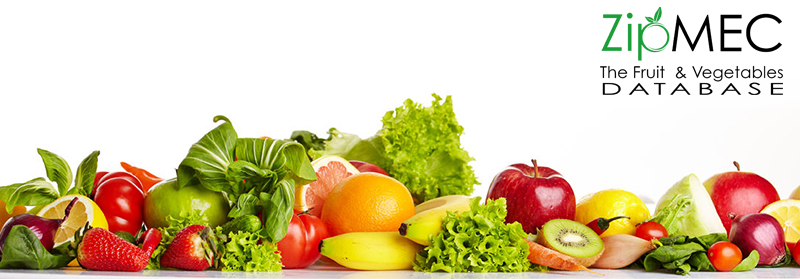 Make your fruit and vegetable company visible with ZIPMEC.EU