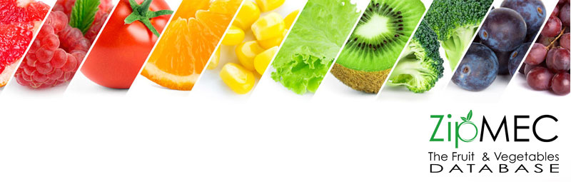 ZIPMEC.EU the portal dedicated to fruit and vegetable companies
