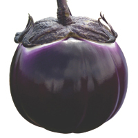 aubergines - history, production, trade